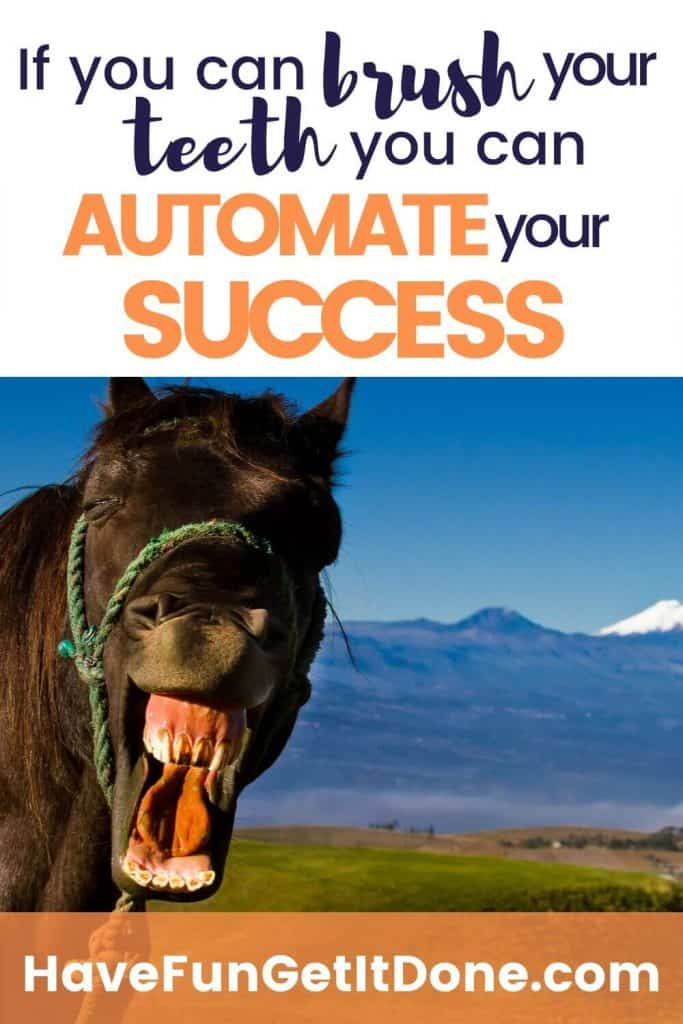 funny horse showing his teeth to illustrate point if you can brush your teeth you can automate success